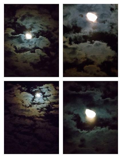 Night Sky (Non-Exclusive License)