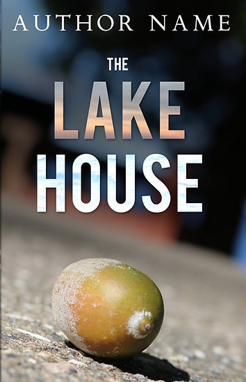The Lake House - Pre Made Cover