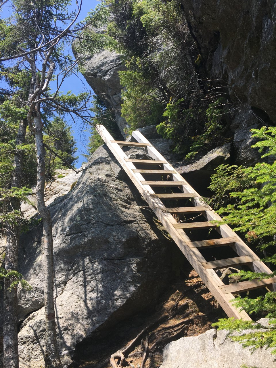 One of the many ladders that descend the southbound route of Mansfield