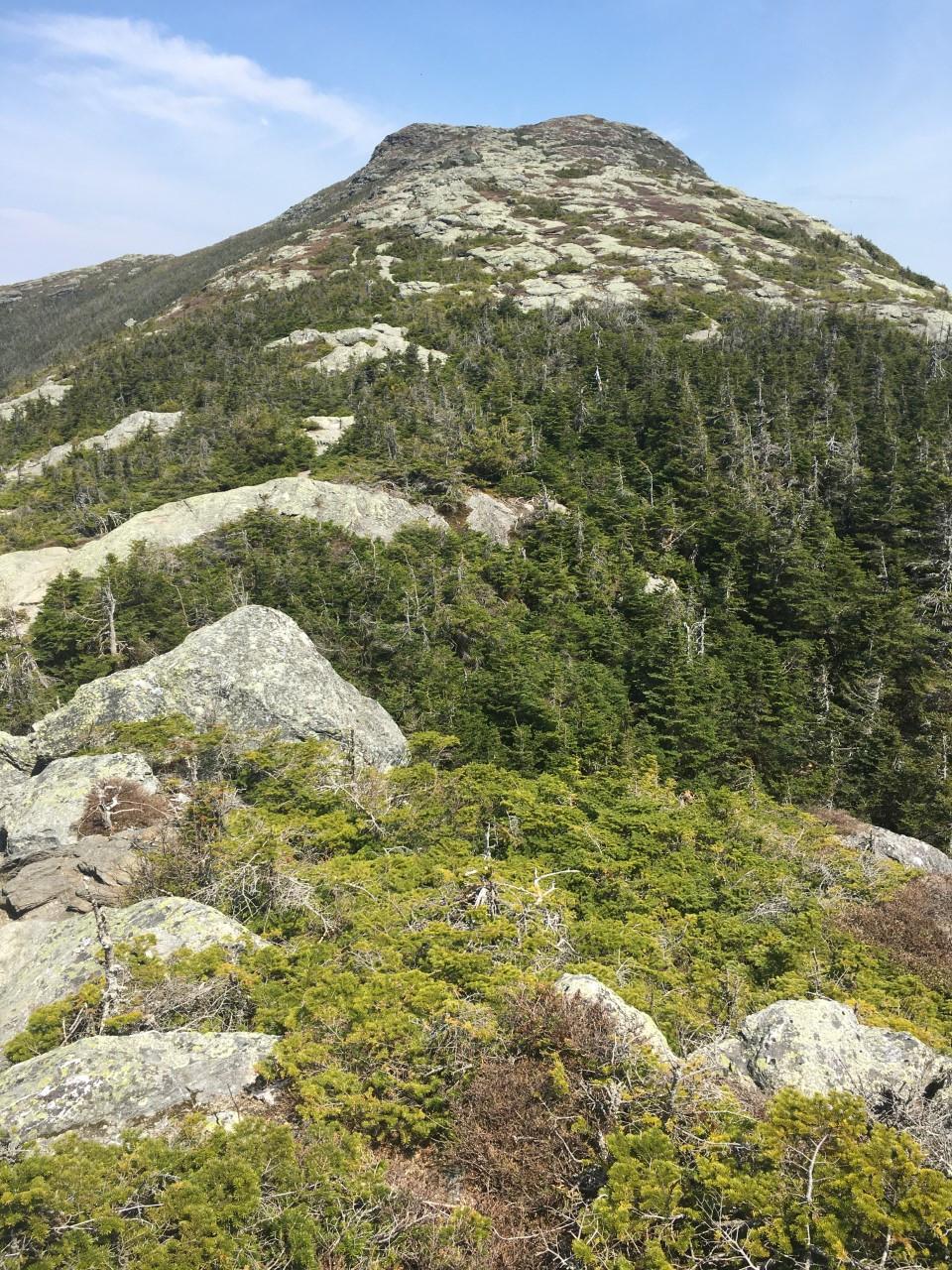 Long Trail: Mount Mansfield