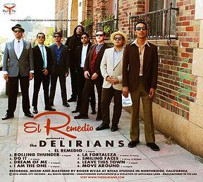 The Delirians El Remedio rear sleeve fin