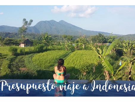 ¿Me puedo permitir viajar a Indonesia? PRESUPUESTO Y HOTELES