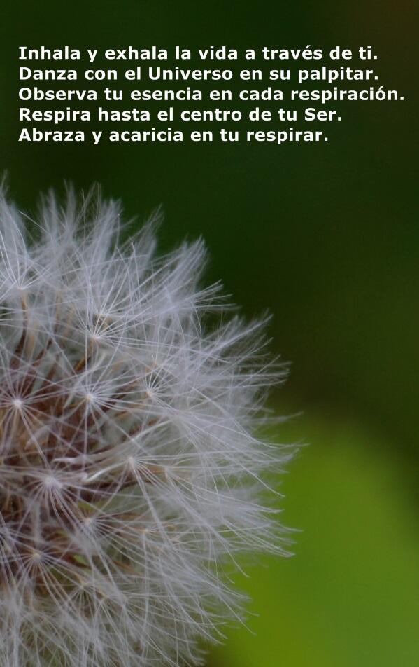 Respira con el Universo