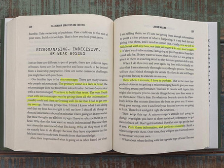 Micromanaging, Indecisive, or Weak Bosses, pages 226-231