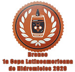 Medalla Latam.png