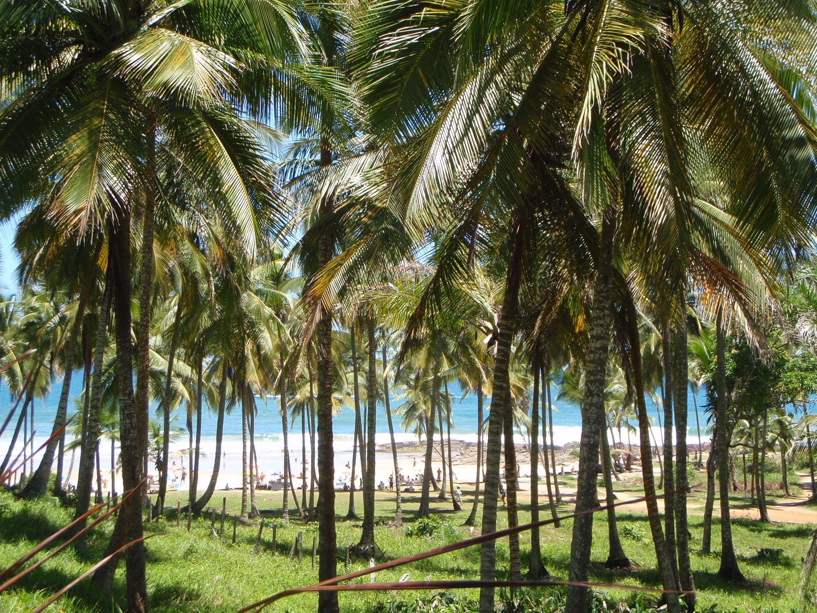 Praia do Resende