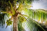 beach-1281680_1280.jpg