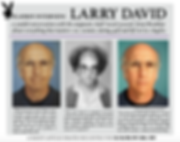 Playboy Larry David Interview