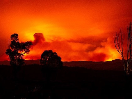 How can we sleep while the country's burning?