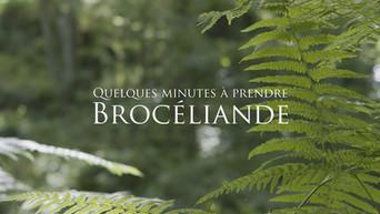 Brocéliande - Quelques minutes à prendre