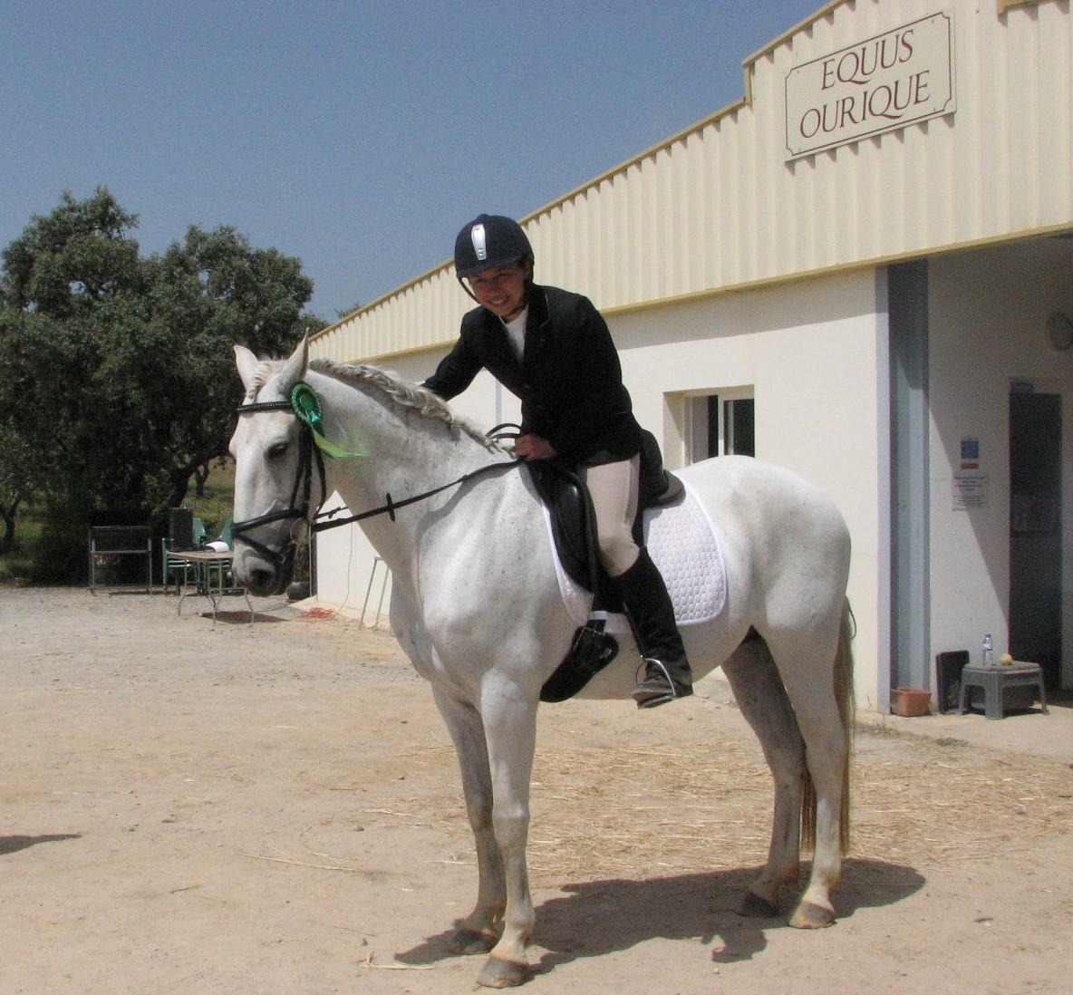 Dressage competition Ourique