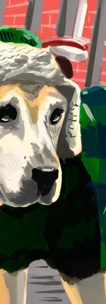 Dog Anderson