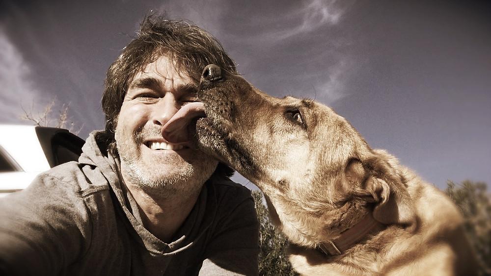 Dog licking human face