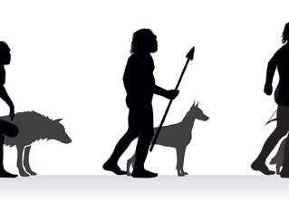 The Origin of man's best friend