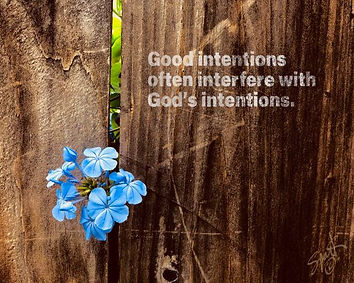 IMG_0334 - good intentions - low res.jpg