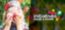 illustration-fleurs.jpg