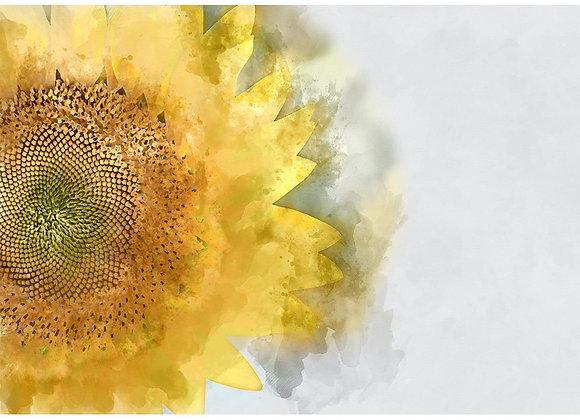 Sunflower - A1