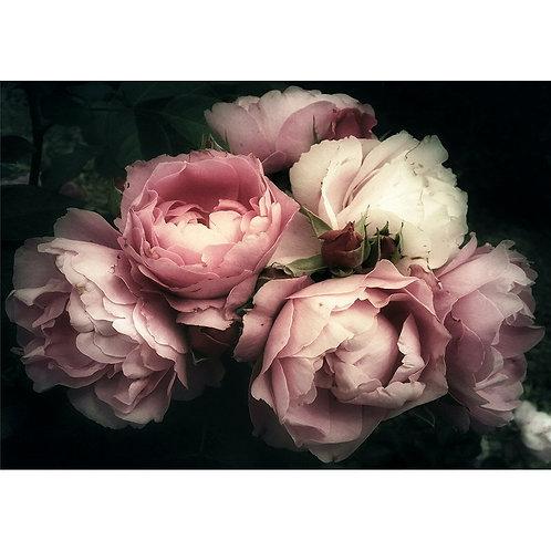 Moody Florals