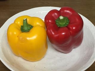 百年床への道⑤-変わりダネ野菜-