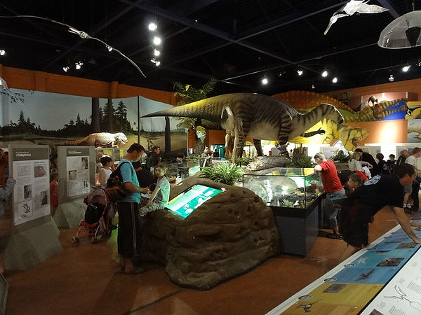 Some of the displays inside the Dinosaur museum in Sandown, Isle of Wight