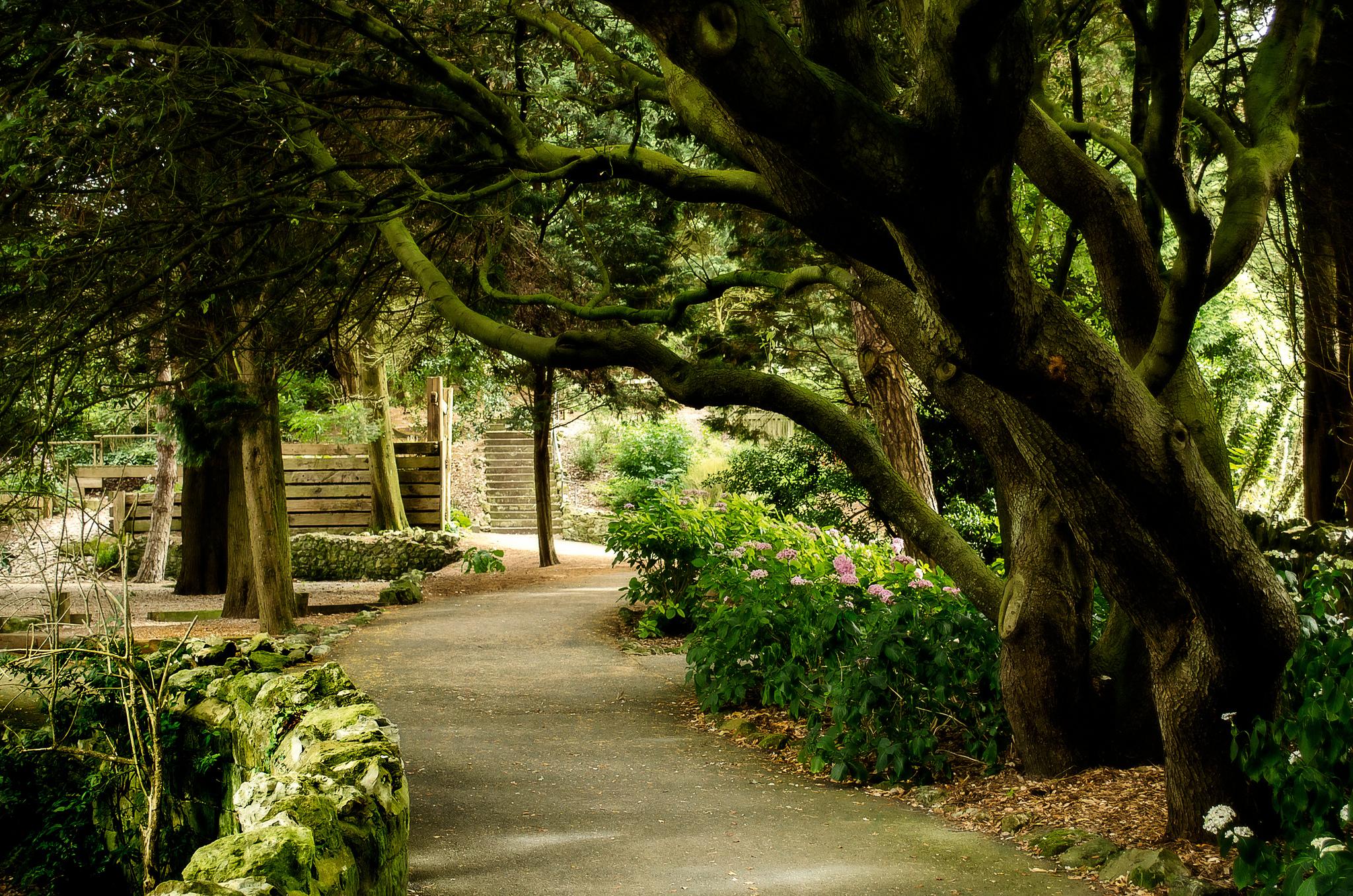 Ventnor Botanic Garden 2013 - 09