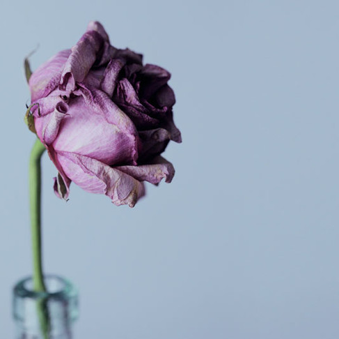 Dealing with an Untimely Death