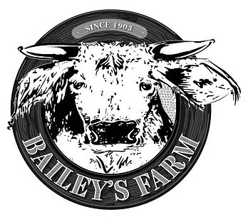 new baileys.jpg