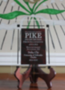 Pike Programming Award Recruitment Divis