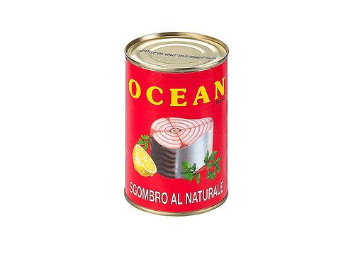 Ocean mackerel tonno al naturale 400 gr Conserve pesci
