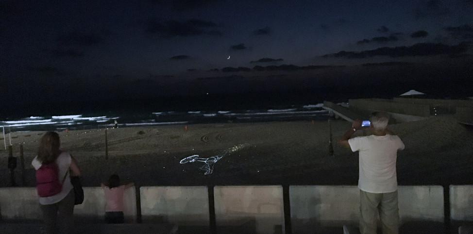 JOINTS screening at Bat Yam shore חוליות- הקרנה בחוף בת ים