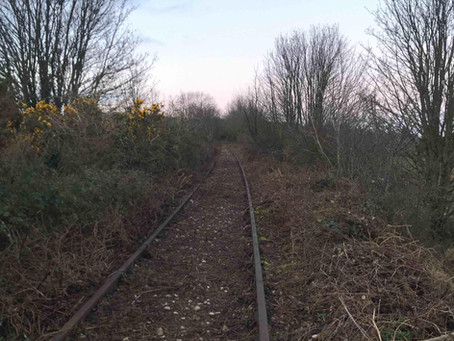 Wye Valley Clearance Work