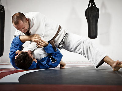 adult jiu jitsu