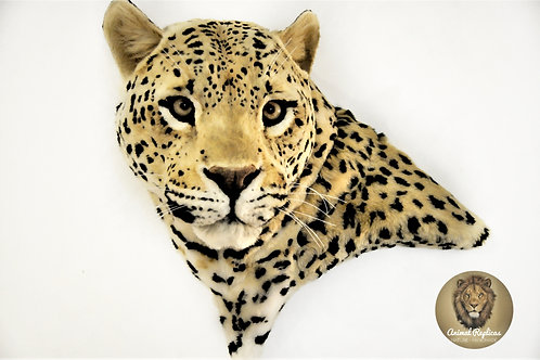 Reproduction Leopard Head Faux Taxidermy Mount