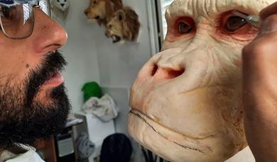 Création de primates #gorilla #silverbackgor