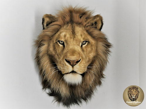 Reproduction Lion Head Faux Taxidermy Mount