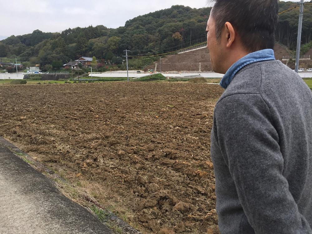 瀬頭社長に田んぼをみせていただきました。蔵の目の前にあります