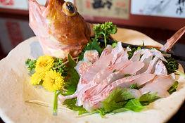 アラカブカサゴのお造り刺身,佐世保の日本酒バータイム小.jpg