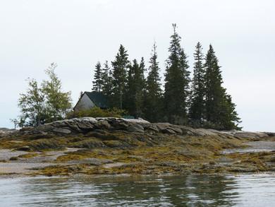 MCWR3 - island.jpg