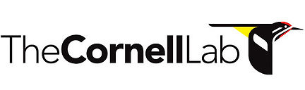 cornell-lab-of-ornithology-logos.jpeg