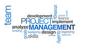 Project and Brand Management