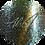 Thumbnail: Corona 15ml | Abstract Colors