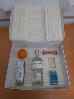 Salcombe Gin box internal.jpg