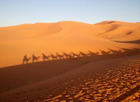 Stage au Maroc : magie garantie !