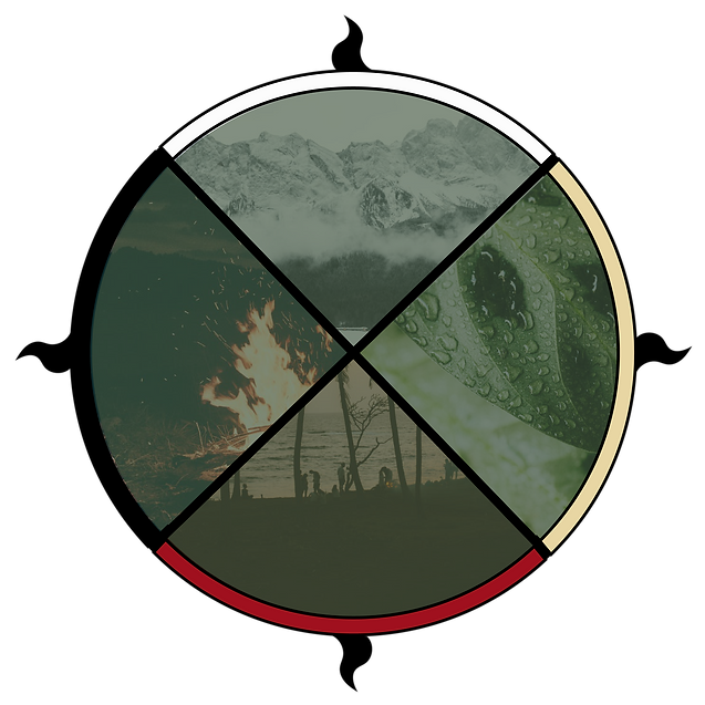 medicine wheel-01.png