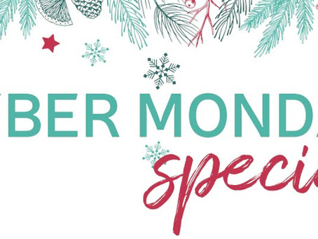 Stamp-N-Storage Cyber Monday Special