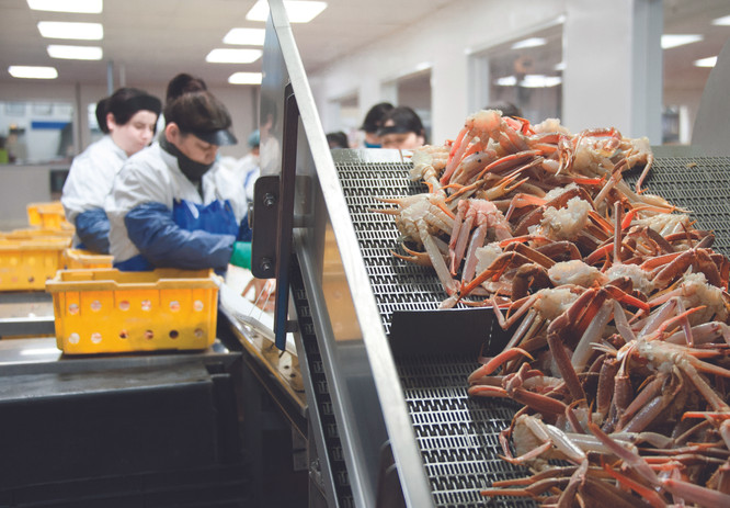 crabe-umek.jpg