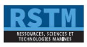 RSTM.PNG