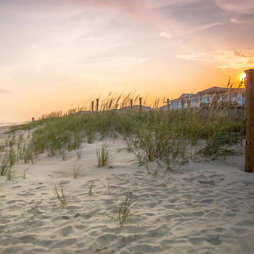 destin florida dunes.jpg