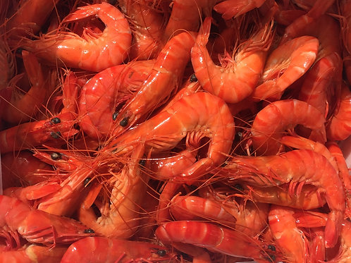 2222 Whole Cooked Black Tiger Prawn 9/12