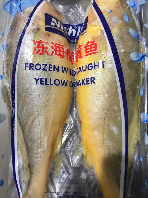 3034 Yellow Croaker (Medium)